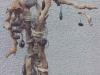 L'arbre à galets